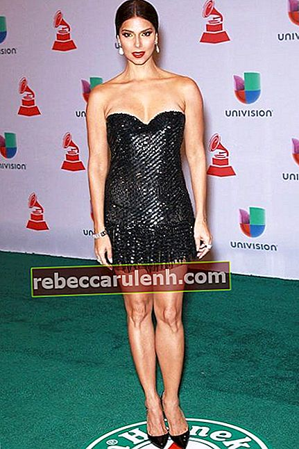 Roselyn Sanchez na Latin Grammy Awards 2014
