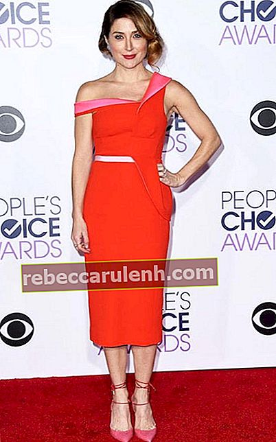 Sasha Alexander bei den People's Choice Awards 2016