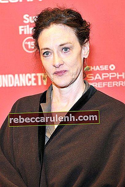 Joan Cusack während der Premiere von 'The End Of The Tour' beim Sundance Film Festival 2015.