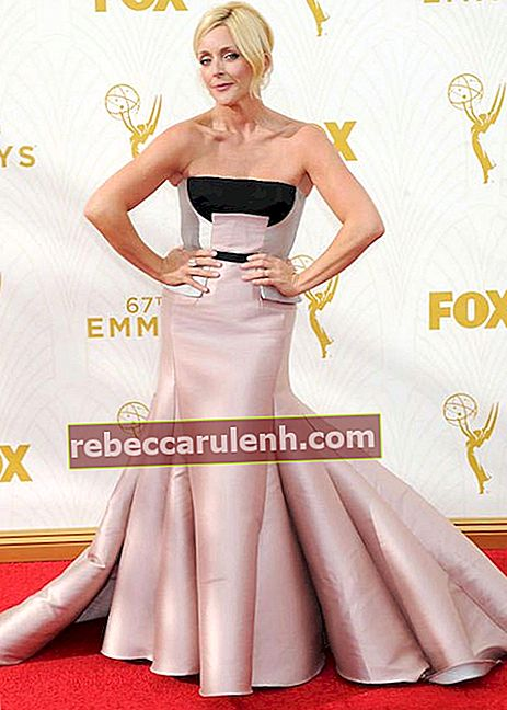 Jane Krakowski ai Primetime Emmy Awards 2015 a Los Angeles