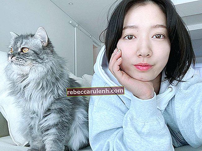 Park Shin-hye Größe, Gewicht, Alter, Körperstatistik