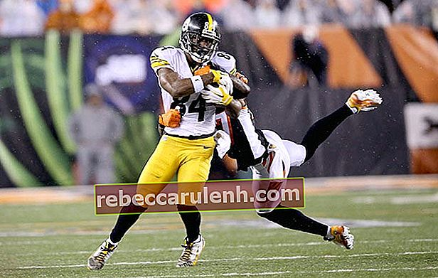 Antonio Brown gegen Cincinnati Bengals 9. Januar 2016 Ohio