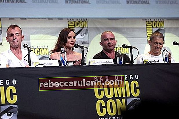 (Von links nach rechts) Robert Knepper, Sarah Wayne Callies, Dominic Purcell und Wentworth Miller