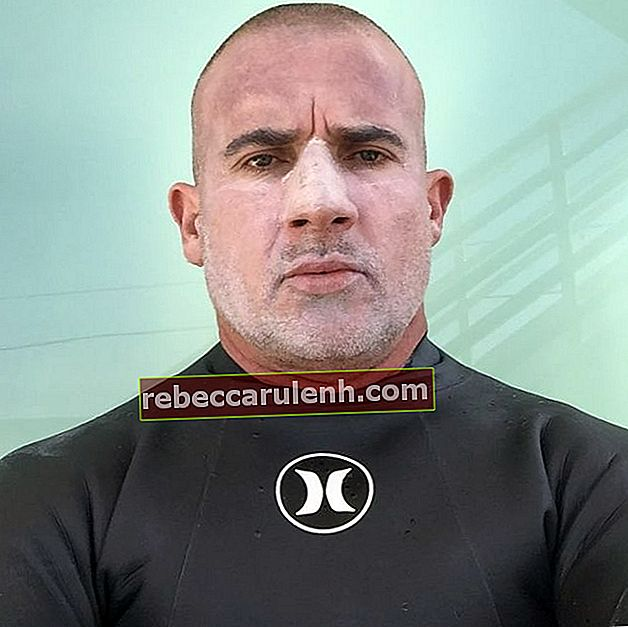 Dominic Purcell im April 2020