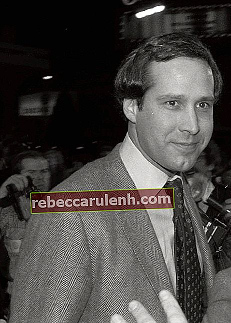 Chevy Chase bei der Premiere des Films 'Seems Like Old Times'