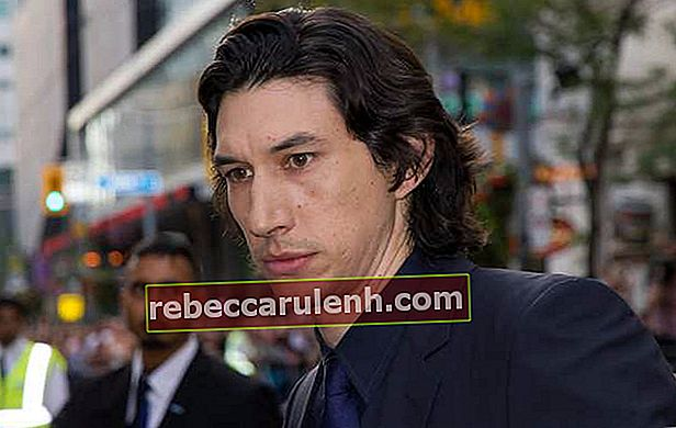 Adam Driver bei der Premiere von While We Are Young
