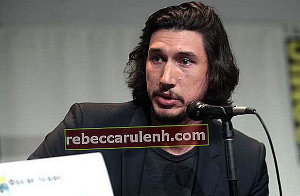 Adam Driver auf der San Diego Comic-Con International 2015