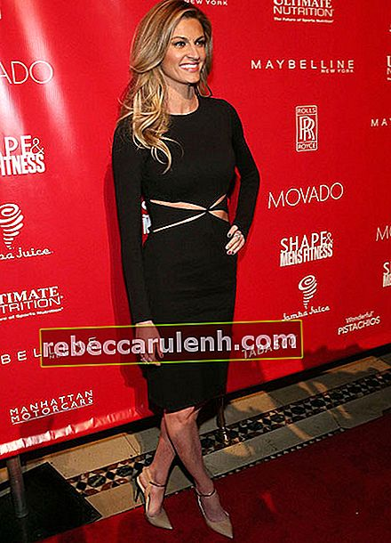 Erin Andrews während der 2014 Shape Men's Fitness Super Bowl Party