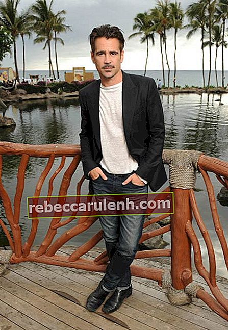 Colin Farrell beim Maui Film Festival im Juni 2015 in Hawaii
