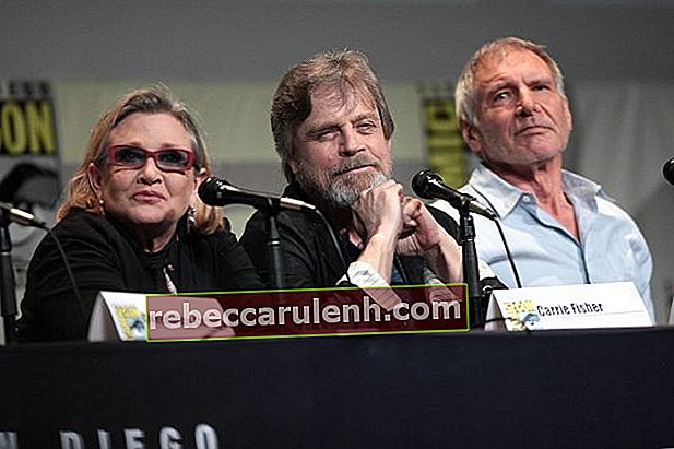 Carrie Fisher, Mark Hamill und Harrison Ford sprechen 2015 auf der San Diego Comic-Con International für Star Wars The Force Awakens