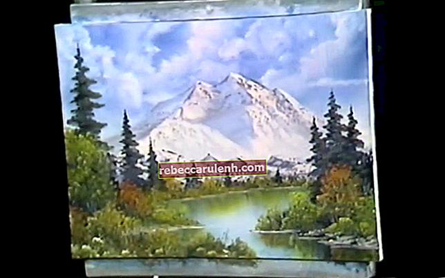 Bob Ross (Maler) Größe, Gewicht, Alter, Körperstatistik