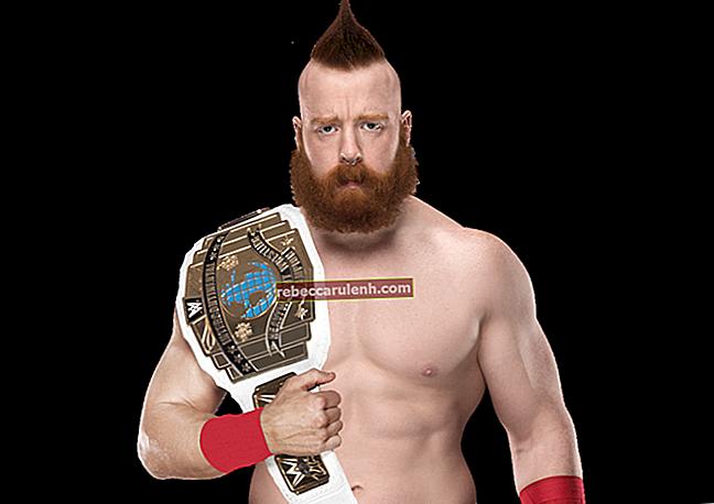 WWE Wrestler Sheamus Größe Gewicht Körper Statistik
